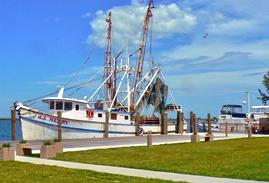 21st Apalachicola Classic Boat & Car Show @ Apalachicola Riverfront Park | Apalachicola | Florida | United States